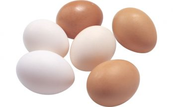 Nuôi gà hướng trứng