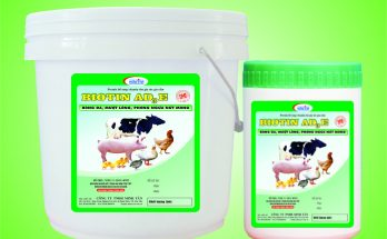 Tầm quan trọng vitamin Biotin trong chăn nuôi gia cầm